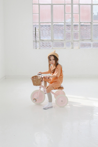 *... BANWOOD ...* Say Hello ... to the new Banwood Trike collection