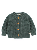 Robin jacket - pine green