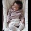 wipstoel baby Rocker Levo Noyer Organic White - Charlie Crane