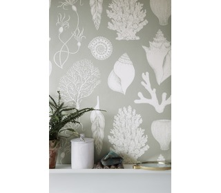 Katy scott wallpaper - shells - aqua - Ferm Living