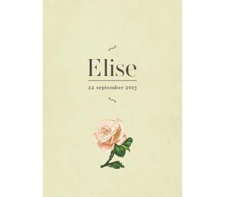 roosje pistache - Paper and June