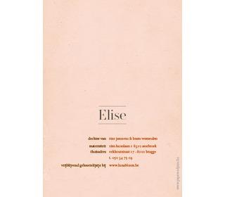 roosje roze - Paper and June