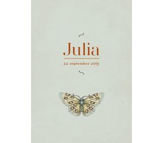 vlinder grijsblauw - Paper and June