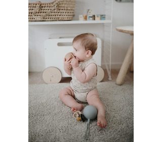 Silicone pacifier holder case - dried thyme - Mushie